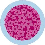 Une icône du virus du papillome humain.