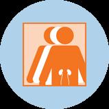 Une icône représentant le cancer du rein avec 3silhouettes. La silhouette orange à l'avant-plan comporte un contour des reins.