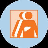 Une icône représentant le cancer du foie avec 3silhouettes. La silhouette orange à l'avant-plan comporte un contour du foie.